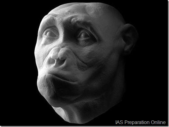 Early-human-ancestors-faces0-515x388
