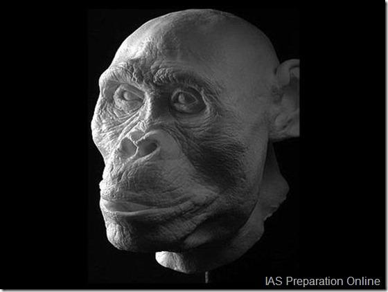 early-human-ancestors-faces2-515x388