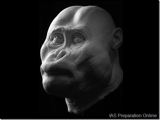 early-human-ancestors-faces3-515x388