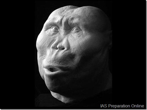 early-human-ancestors-faces4-515x388