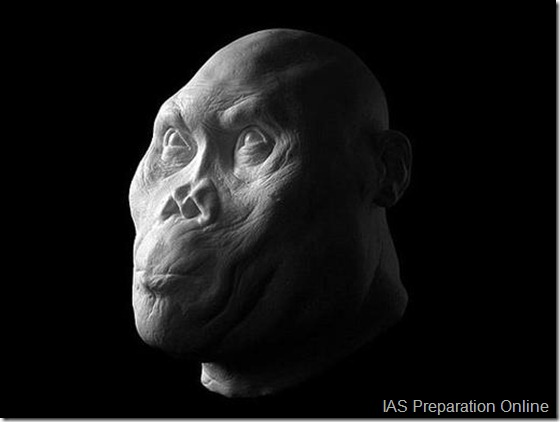 early-human-ancestors-faces5-515x388