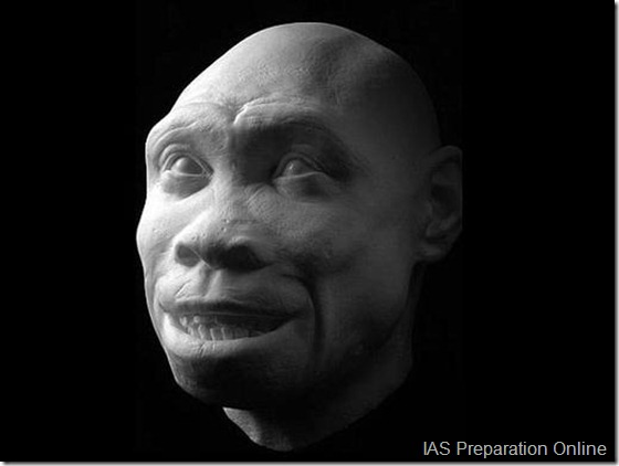 early-human-ancestors-faces6-515x388