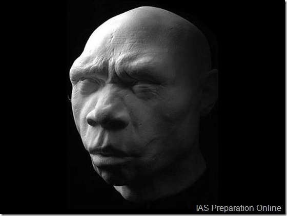 early-human-ancestors-faces7-515x388