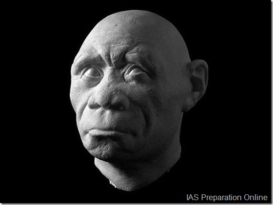 early-human-ancestors-faces9-515x388